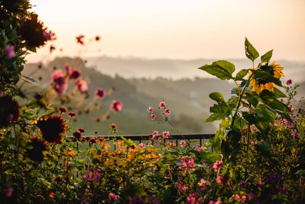Jardin South Styria Garden Polz Austria