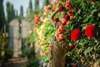 Giardino South styria Garden Polz Austria Polz Renate
