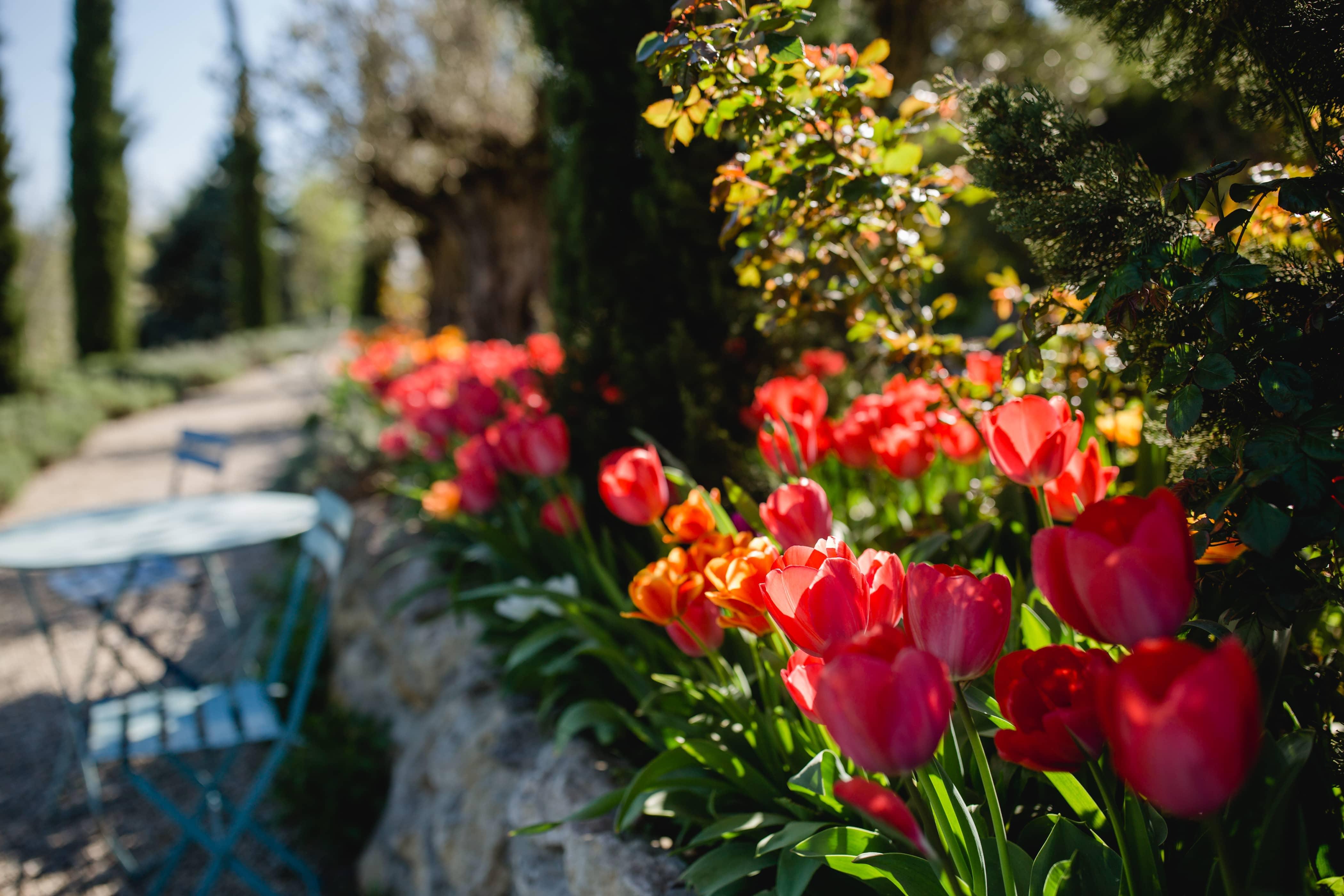 @Südsteiermark Garten Polz Südsteiermark Steiermark Frühling