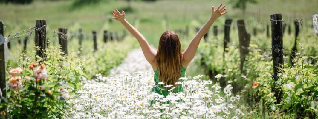 Fühlen Sie sich frei im Garten Polz in der Steiermark