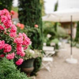 Herrliche Blütenpracht im Schaugarten Steiermark