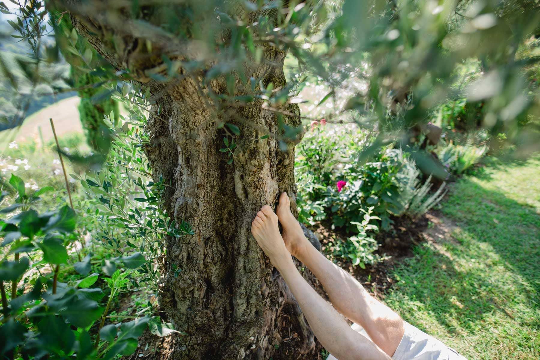 Energetische Arbeiten im Garten Meditation Bachblütenessenzen Steine Coaching Liegende Acht mit Renate Polz
