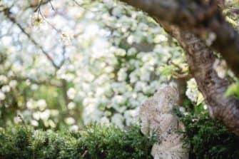 austria gardens österreich garten steiermark garten by renate polz Steiermark frühling Südsteiermark Garten Polz