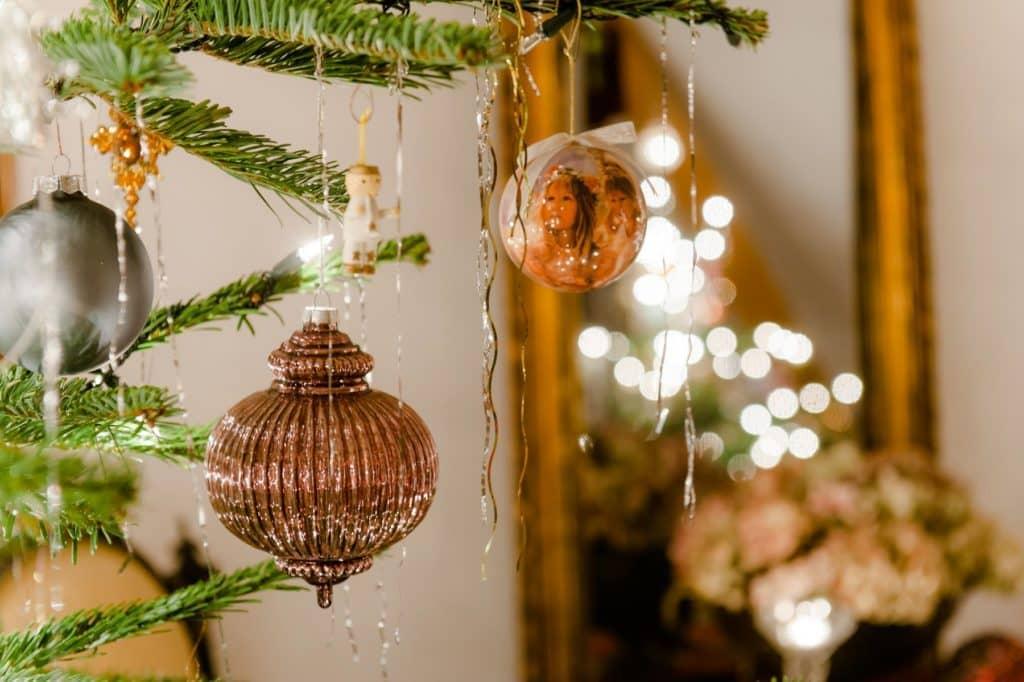Weihnachten Südsteiermark Garten
