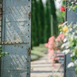 @Polz Garten Hochzeit im @Südsteiermark Garten toscany wedding south styria bohowedding Gartenhochzeit weddings Naturhochzeit greenwedding bohowedding Renate Polz vinyard wedding hochgrassnitzberg